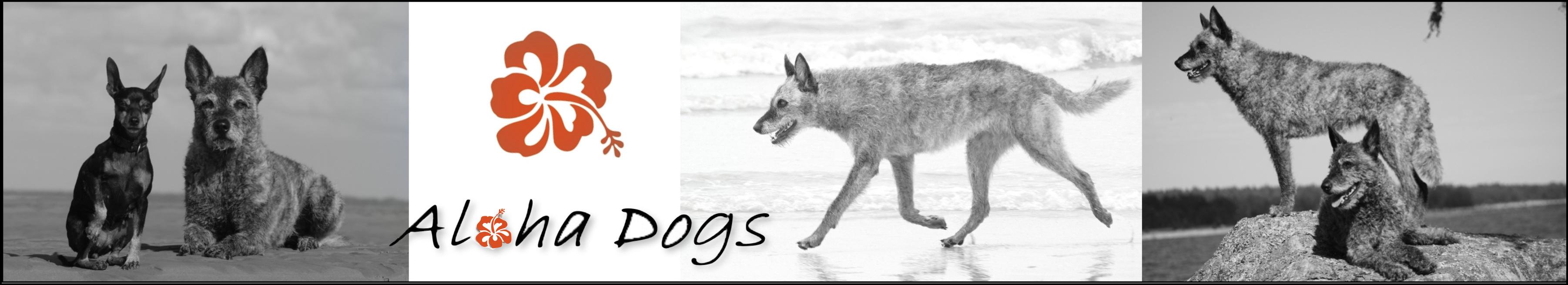 alohadogs